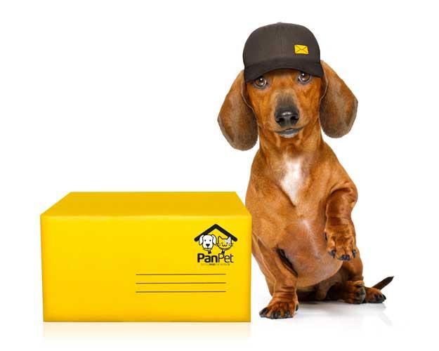 Medagliette cane - Spedizioni-cane-posta